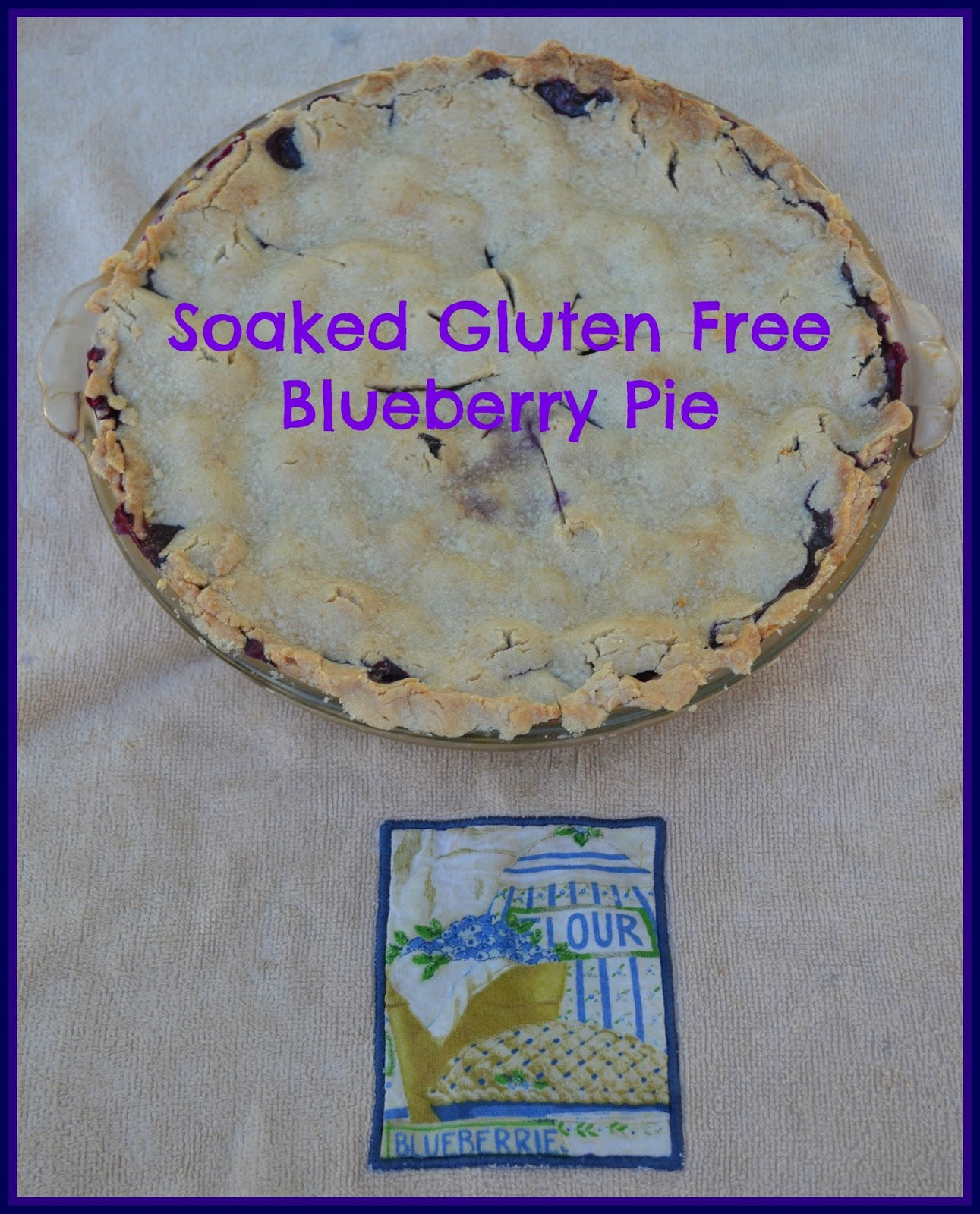 Soaked Gluten Free Blueberry Pie - Just Take A Bite