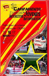 Cartel del Campamento Antifascista Falcón 2013