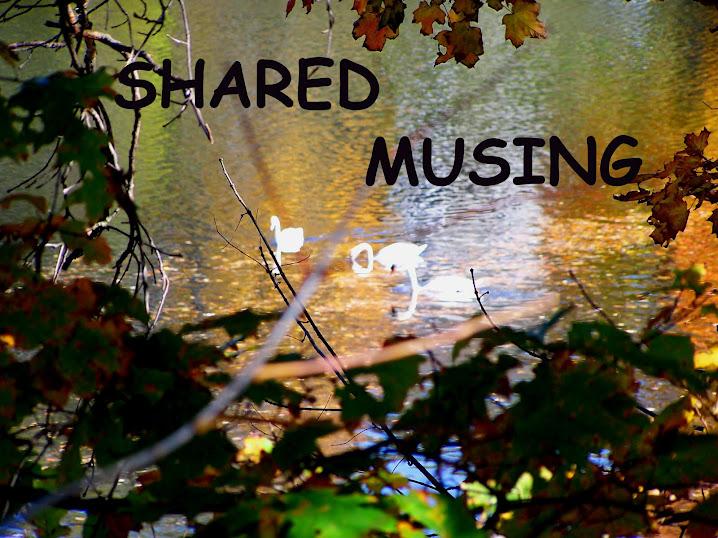 SHARED MUSING