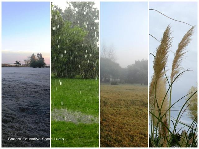 Temperatura - Precipitaciones - Humedad - Viento - Chacra Educativa Santa Lucía