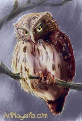 Sparvuggla är en fågelsketch av Artmagenta
