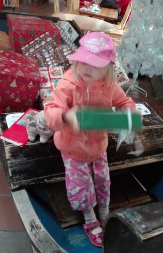 Joulupukin pajakylän reessä