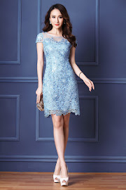 Elegant Embroidery Lace Evening Dress Collections
