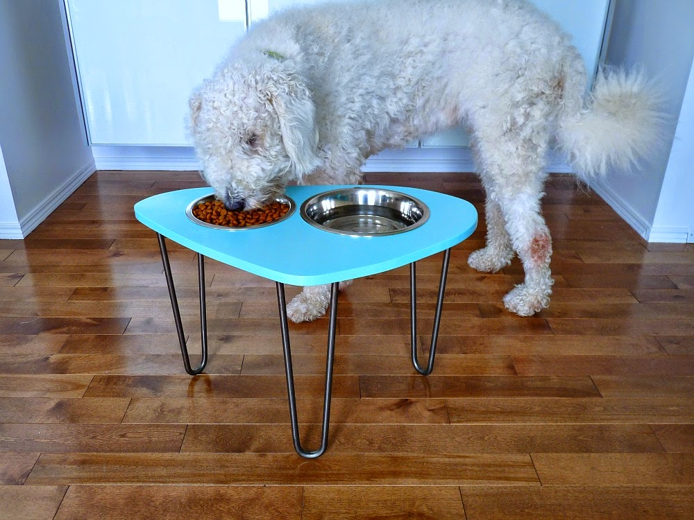 how to make a raised dog feeder