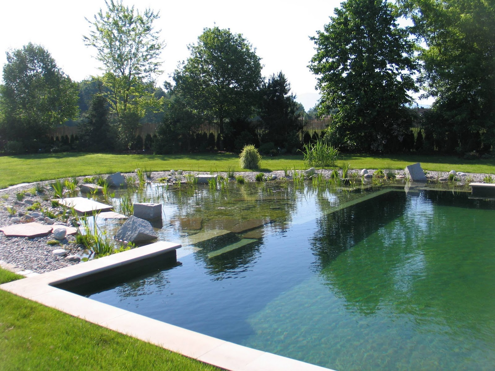 Gold stuff natural swimming pools for Sustainable swimming pools