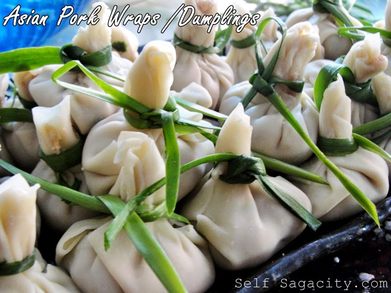 Asian Pork dumplings wrap with chives