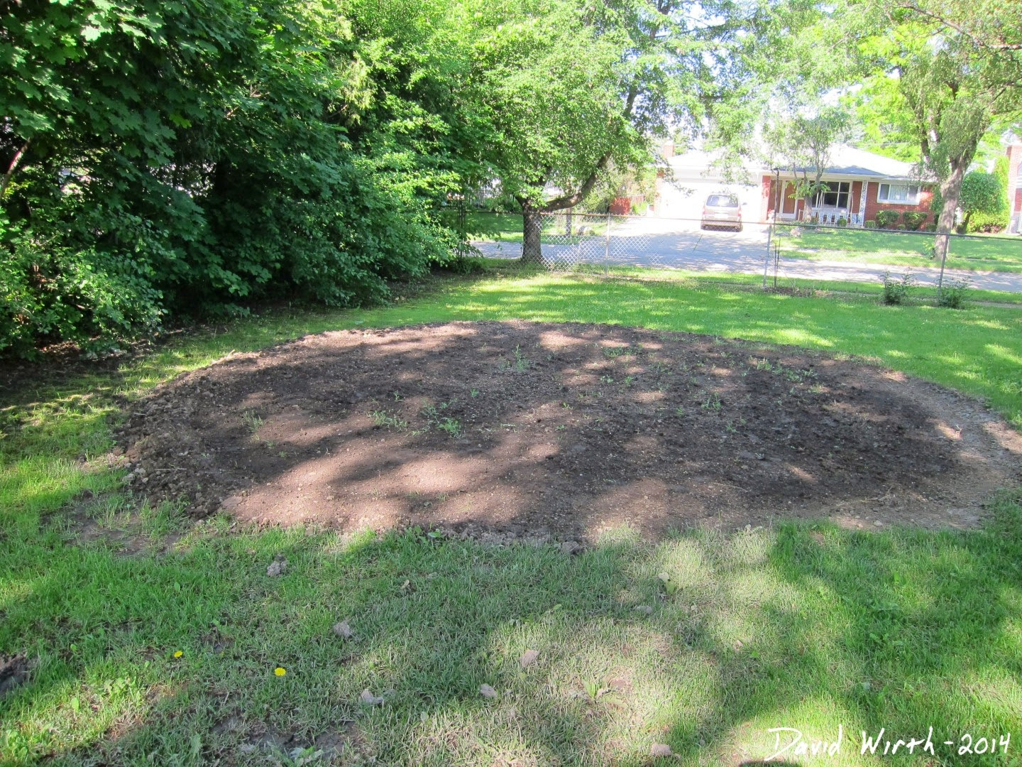 backyard pool area, flatten dirt, dirt for pool level, sand, how to