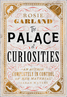 The Palae of Curiosities Rosie Garland cover