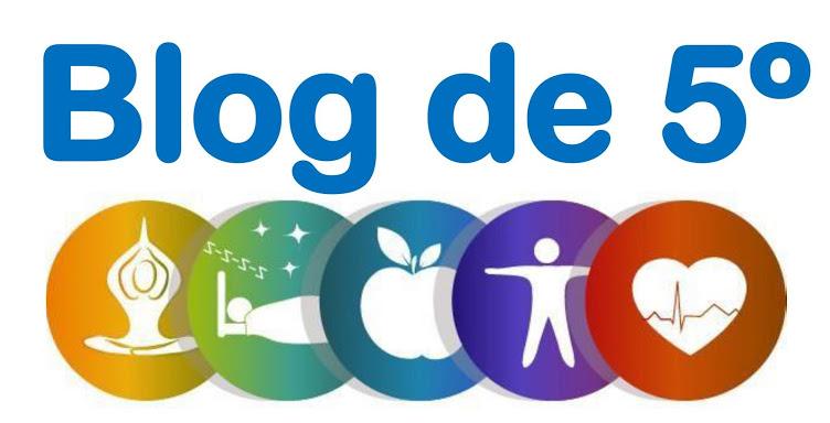 El blog de 5º primaria