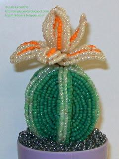Beaded cactus