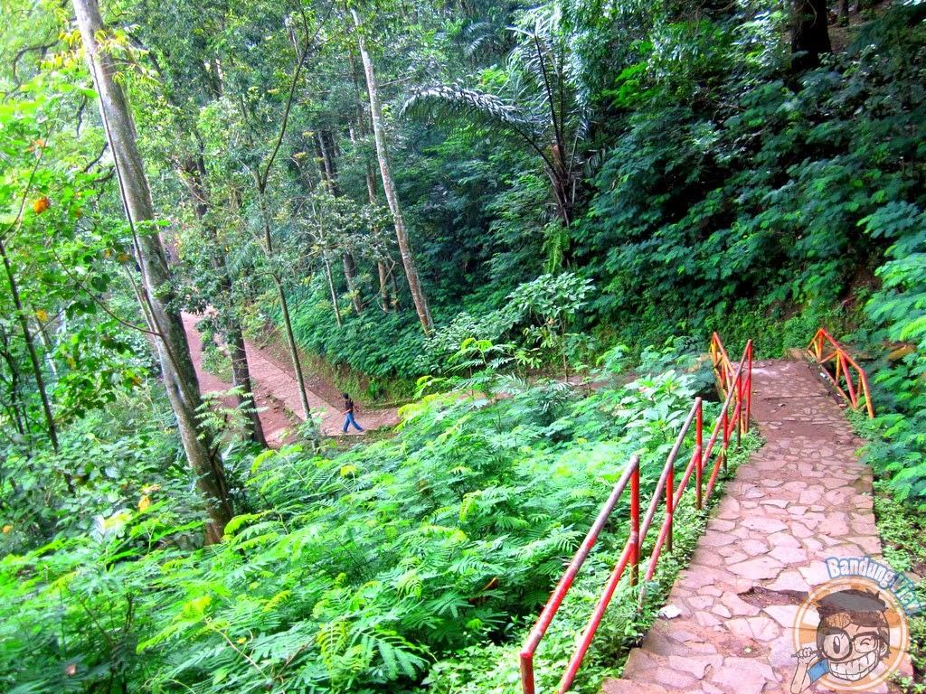 Jogging track Taman Hutan Raya Djuanda menuju goa Jepang