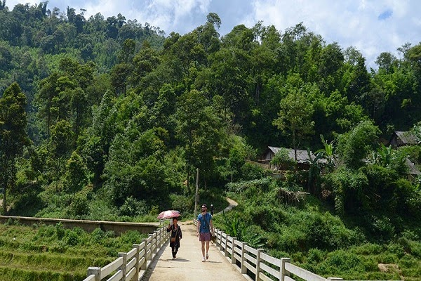 Sapa - Su Pan - Ban Ho - Nam Toong - Thanh Phu by bus 2 days trip/