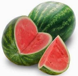budidaya semangka organik nasa