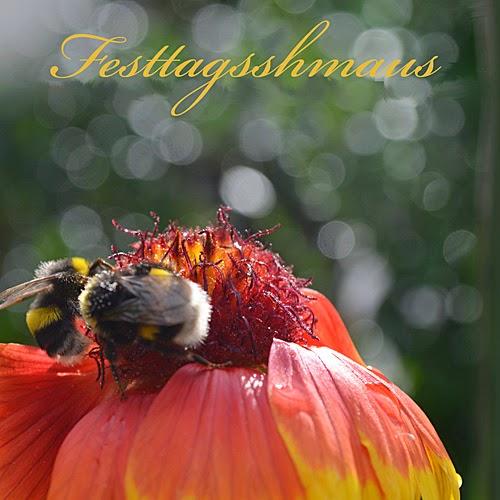 http://www.youblisher.com/p/882035-Fotokreative-Schoenheiten/