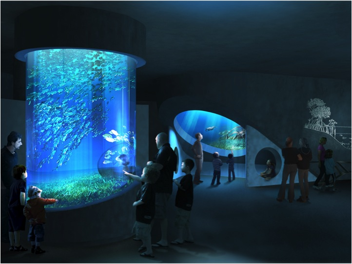 Alex Your Miami Realtor New Science Museum To Break