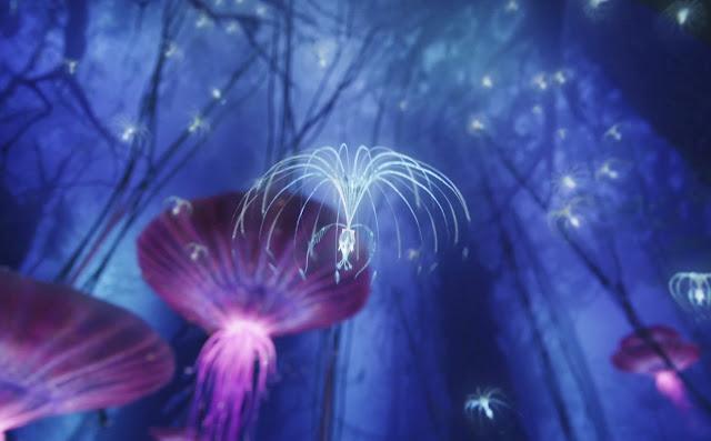 Sementes da Árvore da Vida