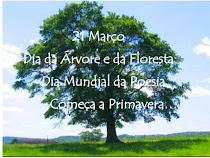 19- Dia do Pai    20-Primavera   21- Dia da Árvore e da Poesia