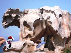 Mireu quina roca!!
