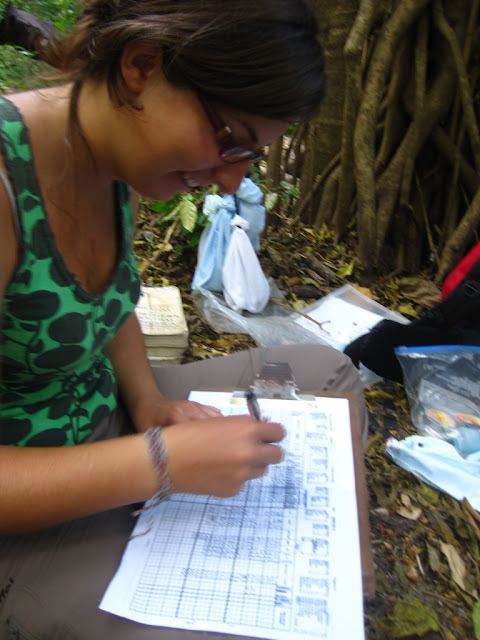 conservation science internship