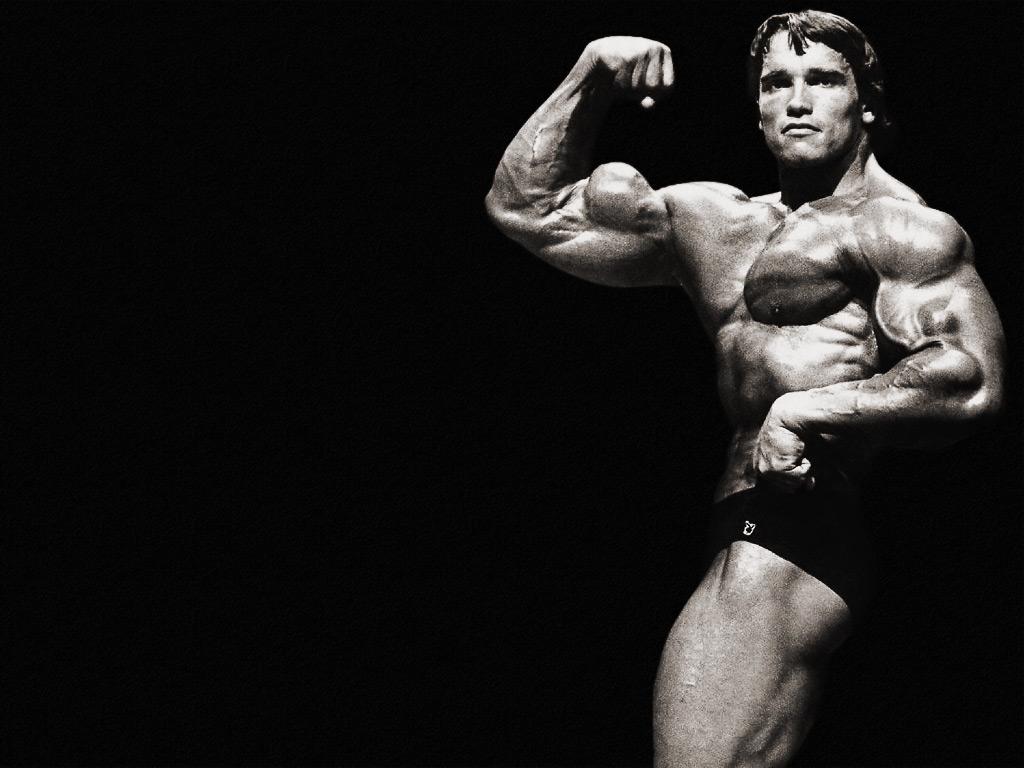 http://4.bp.blogspot.com/-UbVBt_oevf4/Twu7dl4_3MI/AAAAAAAAAU0/VqZTCNGcKb0/s1600/Arnold-Schwarzenegger-Wallpapers-2.jpg