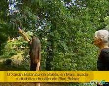El Jardín en Televisión de Galicia.