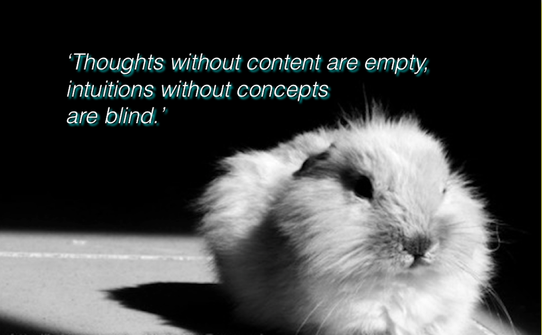 'Thoughts without Content are empty, intuitions without concepts are blind.'