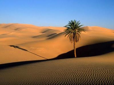 Sahara Yang Misterius