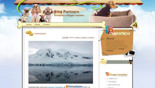Sould Partners Blogger Templates