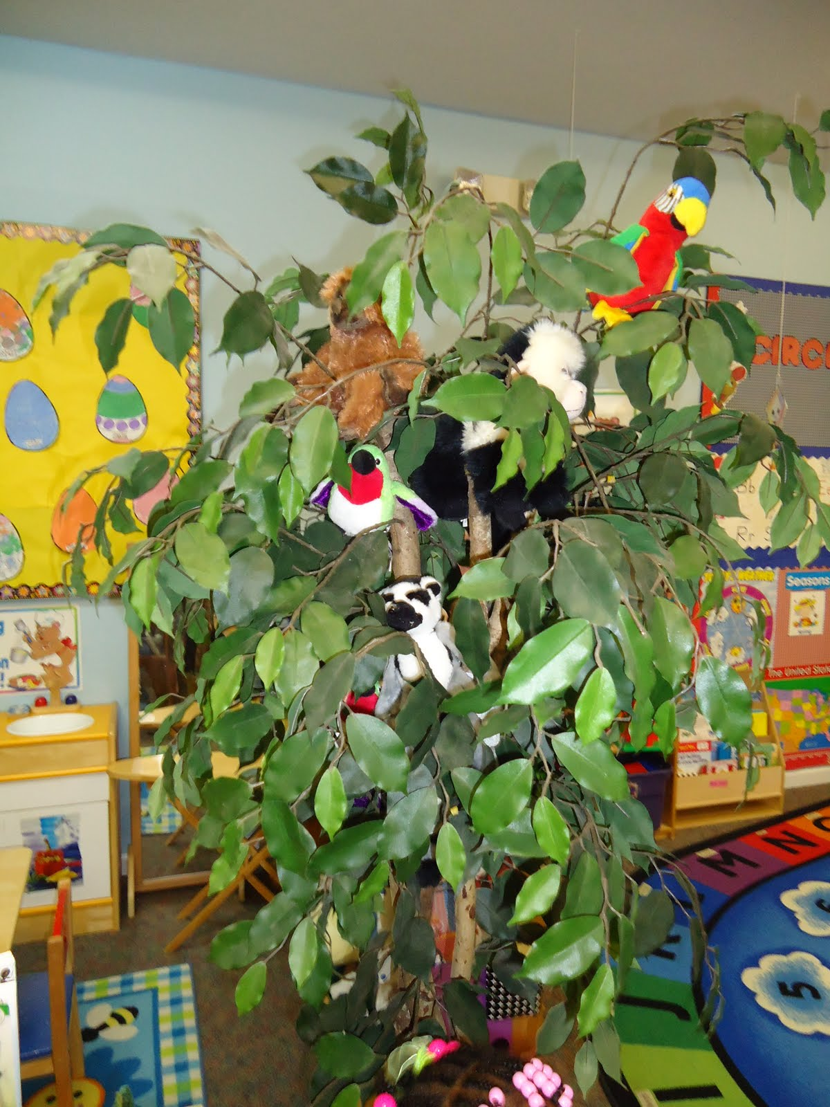 Rainforest Theme Classroom Ideas ~ Little illuminations creating a rainforest in the classroom