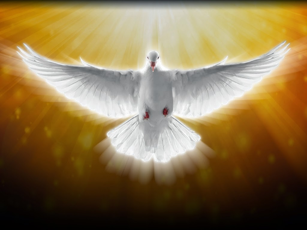 holy spirit Every christian understands what the holy spirit is, right wrong even long-time theologians admit in their commentaries that, in the end, the spirit is an incomprehensible mystery to them.