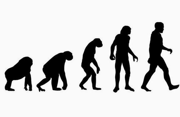 Problemas na coluna podem estar relacionados a Evolução
