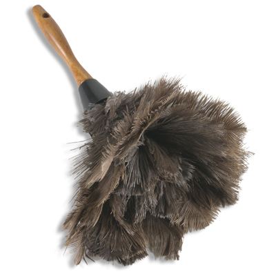 feather+duster.jpg