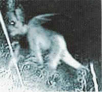 Sakuratotomisteri.blogspot.com - 4 Hantu yang Menakutkan Di Kalimantan