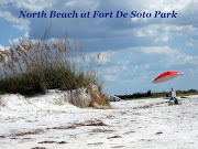 (New) Favorite Florida Beach (north beach fort de soto)