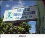 SINDICATO DOS TRABALHADORES