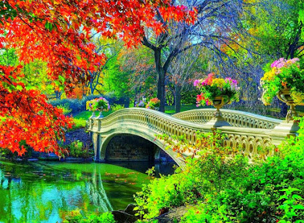 Somos Puentes de Luz que Unen la Tierra con el Cielo