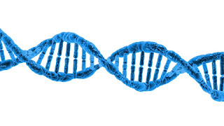 DNA has an amazingly complex and sophisticated code, which indicates the design of the Creator, and has nothing to do with evolution.