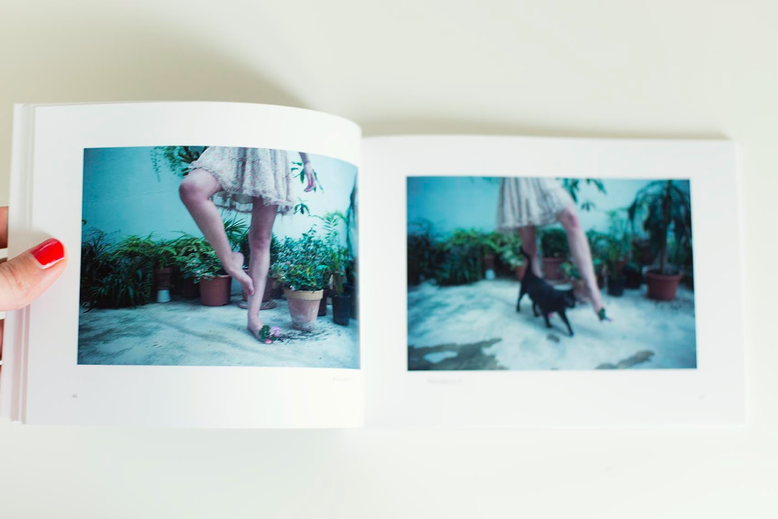 ©Irene Cruz - Blumen. Photobook. Fotografía | Photography
