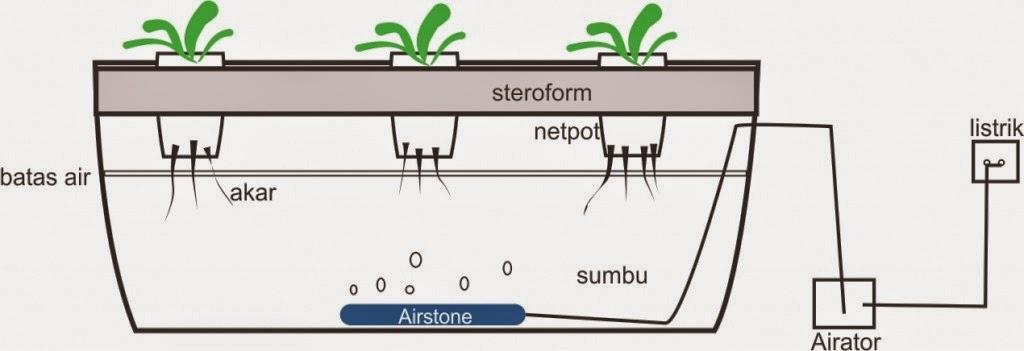 hidroponik sistem rakit apung