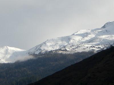 Gorson Top, Tapovan, Gorson Bugyal, Auli, Garhwal, Uttarakhand, weekend getaway, Himalayas, trek