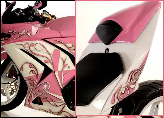 Modifikasi Kawasaki Ninja 250R Bermotif Bunga ( Centil ) title=