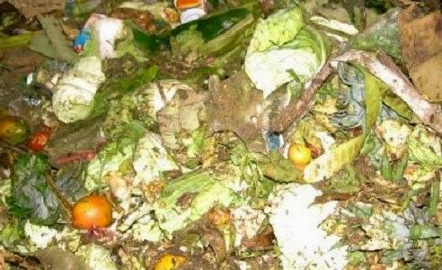 Cara Membuat MOL dari Limbah Sayuran