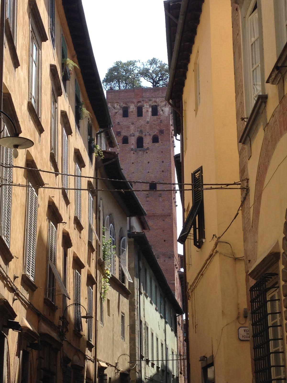 Lucca, Luglio 2017