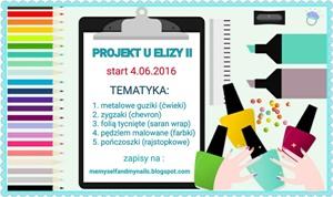 Projekt u Elizy