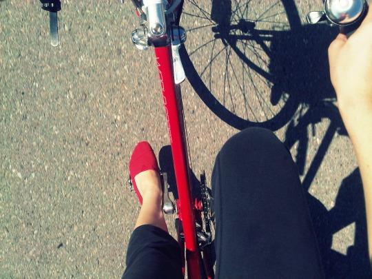 bike tour: cargo