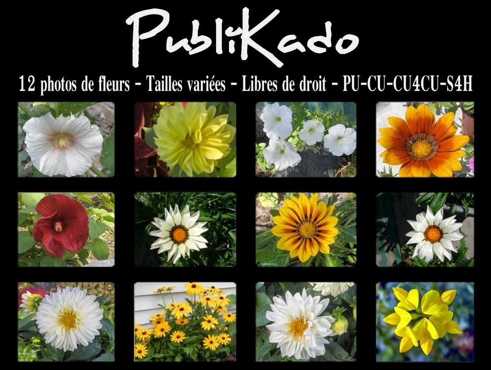 http://4.bp.blogspot.com/-UfSRjSBPxS4/U96IxJIO5SI/AAAAAAAAM6I/djAQjfW0z_A/s1600/Photos+de+fleurs+-+Pack+%23+2+PREVIEW.jpg