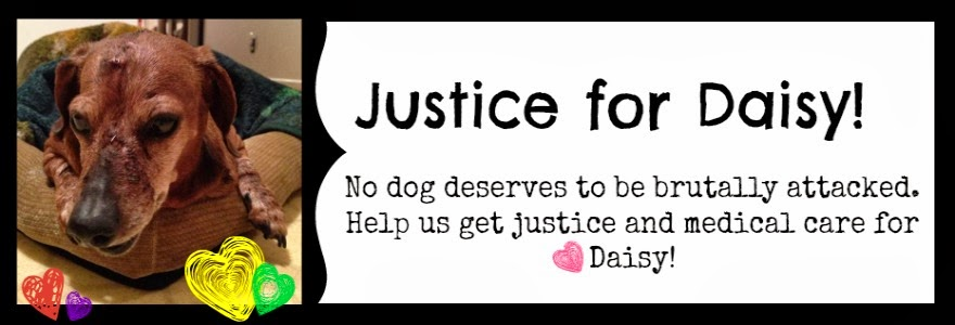 Justice for Daisy