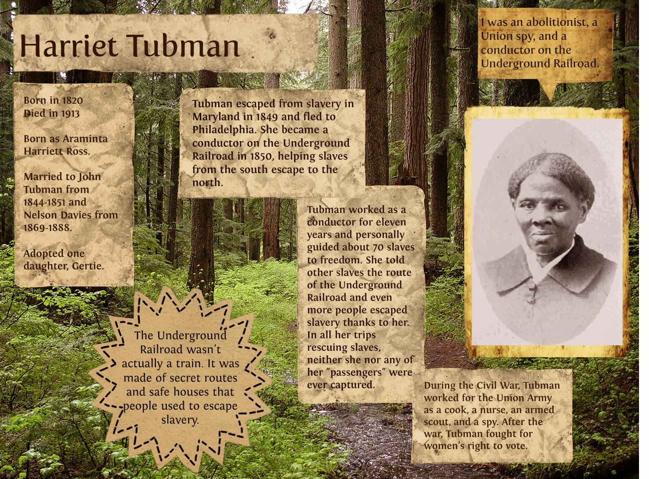 "an introduction to the life of harriet tubman Introduction harriet tubman was an escaped slave who became a ""conductor"" on the underground railroad,  pneumonia took harriet tubman's life on march 13,."