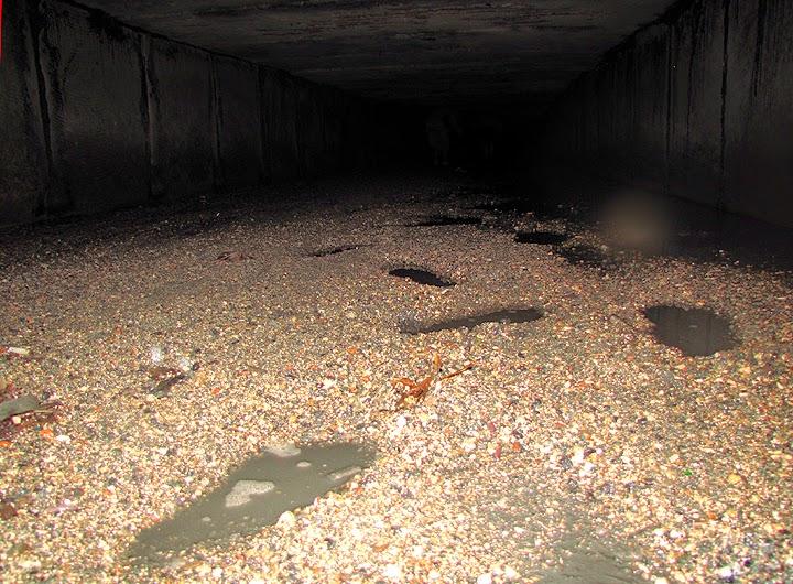 Болото в подземной речке Казанке под Симферополем