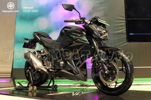 Kawasaki Z250 Flat Ebony